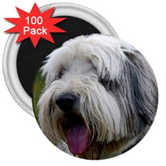 Bearded Collie 3  Magnets (100 pack)