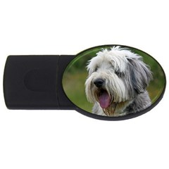 Bearded Collie USB Flash Drive Oval (2 GB)
