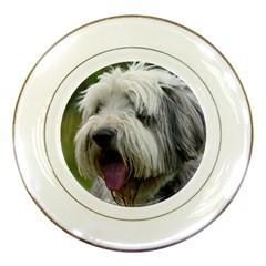 Bearded Collie Porcelain Plates