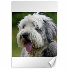 Bearded Collie Canvas 12  x 18