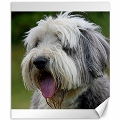 Bearded Collie Canvas 20  x 24