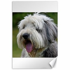 Bearded Collie Canvas 24  x 36