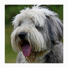 Bearded Collie Medium Glasses Cloth