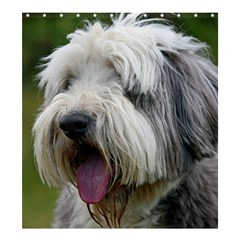 Bearded Collie Shower Curtain 66  x 72  (Large)