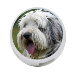 Bearded Collie 4-Port USB Hub (One Side)