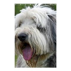 Bearded Collie Shower Curtain 48  x 72  (Small)