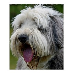 Bearded Collie Shower Curtain 60  x 72  (Medium)