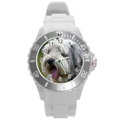 Bearded Collie Round Plastic Sport Watch (L)