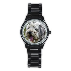 Bearded Collie Stainless Steel Round Watch