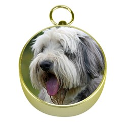 Bearded Collie Gold Compasses
