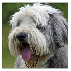 Bearded Collie Large Satin Scarf (Square)