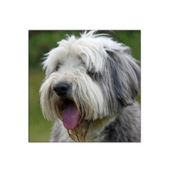 Bearded Collie Satin Bandana Scarf