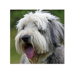 Bearded Collie Small Satin Scarf (Square)