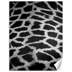 Black And White Giraffe Skin Pattern Canvas 18  x 24