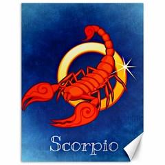 Zodiac Scorpio Canvas 12  x 16