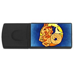Zodiac Capricorn USB Flash Drive Rectangular (1 GB)
