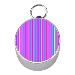 Blue And Pink Stripes Mini Silver Compasses