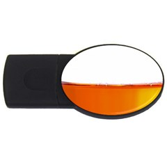 The Wine Bubbles Background USB Flash Drive Oval (1 GB)