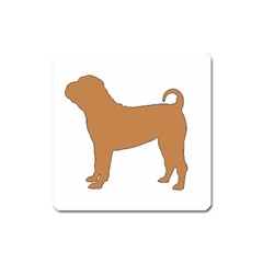 Chinese Shar Pei Silo Color Square Magnet