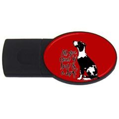 Dog person USB Flash Drive Oval (2 GB)
