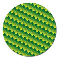 Dragon Scale Scales Pattern Magnet 5  (Round)