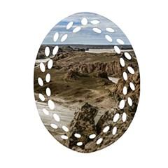 Miradores De Darwin, Santa Cruz Argentina Oval Filigree Ornament (Two Sides)