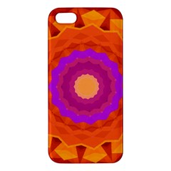 Mandala Orange Pink Bright Apple Iphone 5 Premium Hardshell Case