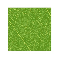 Green Leaf Line Small Satin Scarf (Square)