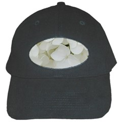 Hydrangea Flowers Blossom White Floral Photography Elegant Bridal Chic  Black Cap