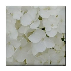 Hydrangea Flowers Blossom White Floral Photography Elegant Bridal Chic  Tile Coasters
