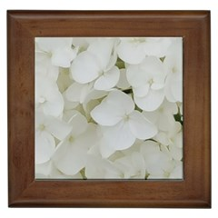 Hydrangea Flowers Blossom White Floral Photography Elegant Bridal Chic  Framed Tiles