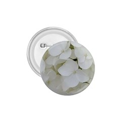 Hydrangea Flowers Blossom White Floral Photography Elegant Bridal Chic  1.75  Buttons