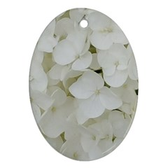 Hydrangea Flowers Blossom White Floral Photography Elegant Bridal Chic  Ornament (Oval)