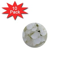 Hydrangea Flowers Blossom White Floral Photography Elegant Bridal Chic  1  Mini Magnet (10 pack)