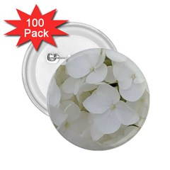 Hydrangea Flowers Blossom White Floral Photography Elegant Bridal Chic  2.25  Buttons (100 pack)