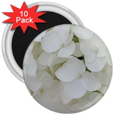 Hydrangea Flowers Blossom White Floral Photography Elegant Bridal Chic  3  Magnets (10 pack)