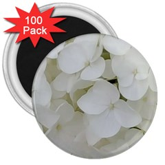 Hydrangea Flowers Blossom White Floral Photography Elegant Bridal Chic  3  Magnets (100 pack)