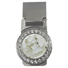 Hydrangea Flowers Blossom White Floral Photography Elegant Bridal Chic  Money Clips (CZ)