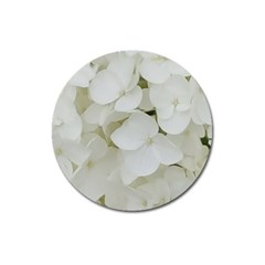 Hydrangea Flowers Blossom White Floral Photography Elegant Bridal Chic  Magnet 3  (Round)