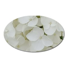 Hydrangea Flowers Blossom White Floral Photography Elegant Bridal Chic  Oval Magnet