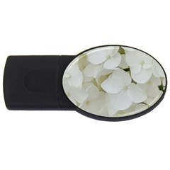 Hydrangea Flowers Blossom White Floral Photography Elegant Bridal Chic  USB Flash Drive Oval (4 GB)