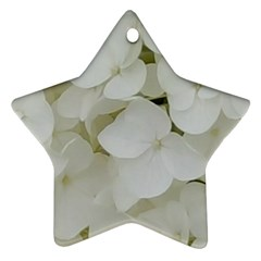 Hydrangea Flowers Blossom White Floral Photography Elegant Bridal Chic  Star Ornament (Two Sides)