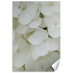 Hydrangea Flowers Blossom White Floral Photography Elegant Bridal Chic  Canvas 20  x 30