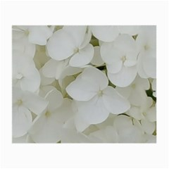 Hydrangea Flowers Blossom White Floral Photography Elegant Bridal Chic  Small Glasses Cloth (2-Side)