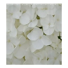 Hydrangea Flowers Blossom White Floral Photography Elegant Bridal Chic  Shower Curtain 66  x 72  (Large)