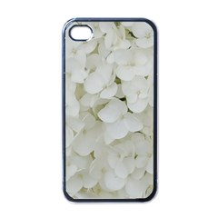 Hydrangea Flowers Blossom White Floral Photography Elegant Bridal Chic  Apple iPhone 4 Case (Black)