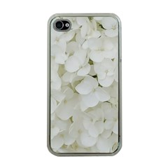 Hydrangea Flowers Blossom White Floral Photography Elegant Bridal Chic  Apple iPhone 4 Case (Clear)