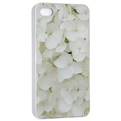 Hydrangea Flowers Blossom White Floral Photography Elegant Bridal Chic  Apple iPhone 4/4s Seamless Case (White)