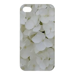 Hydrangea Flowers Blossom White Floral Photography Elegant Bridal Chic  Apple iPhone 4/4S Premium Hardshell Case
