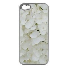 Hydrangea Flowers Blossom White Floral Photography Elegant Bridal Chic  Apple iPhone 5 Case (Silver)